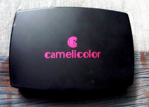 camelicolormakeupartistkit11