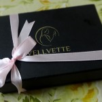 Its Better Late Than Never – Vellvette Box (October Edition)