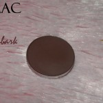 MAC Embark Eyeshadow Review, Swatch, Photos EOTD
