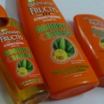 Garnier Fructis Goodbye Damage Range Review