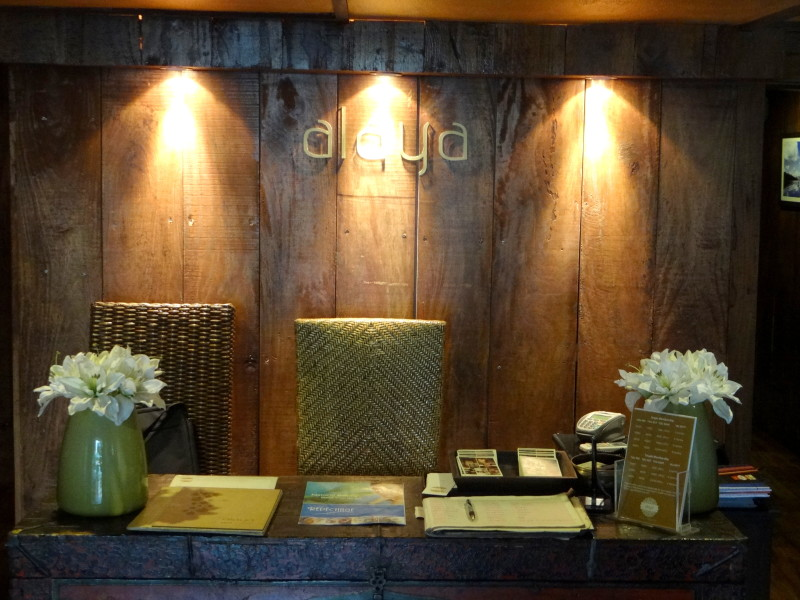 alaya spa & salon saket review (1)
