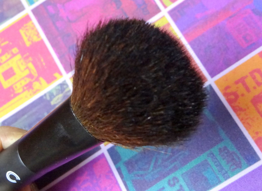Basicare Powder Brush (3)