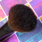 Bugdet Friday – Basicare Powder Brush Review