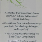 Blind Testing – New Shampoo & Conditioner