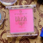 Essence Blush Up! Powder Blush (20) Pinky Flow Review Swatches Photos