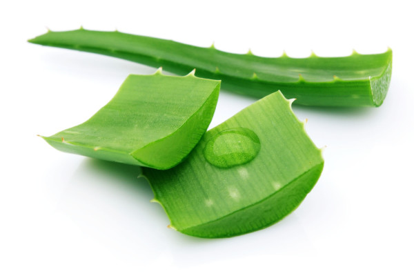 5 Homemade Face Masks Using Aloe Vera