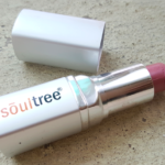 Soul tree Ayurvedic Lipstick Nude Pink Review Photos Price